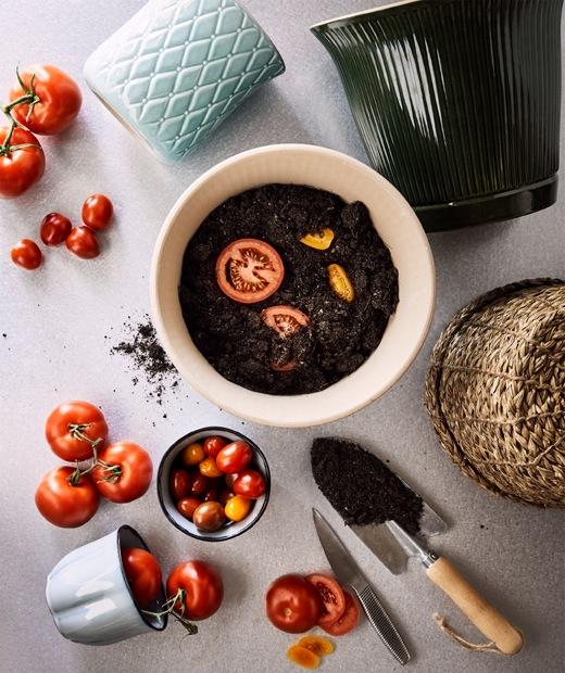 陶瓷和藤製花盆、成熟番茄,以及剛剛種在泥裡的切片黃色和紅色番茄。