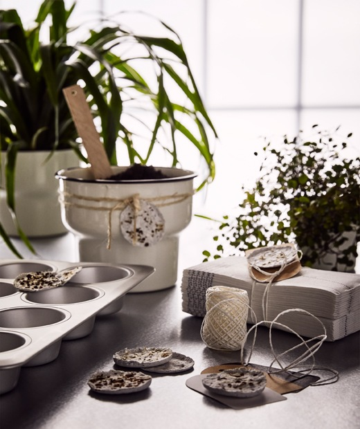 Green plants, home-made plant pods in a muffin tin and a beige plant pot gift with a home-made seed pod tied around it.