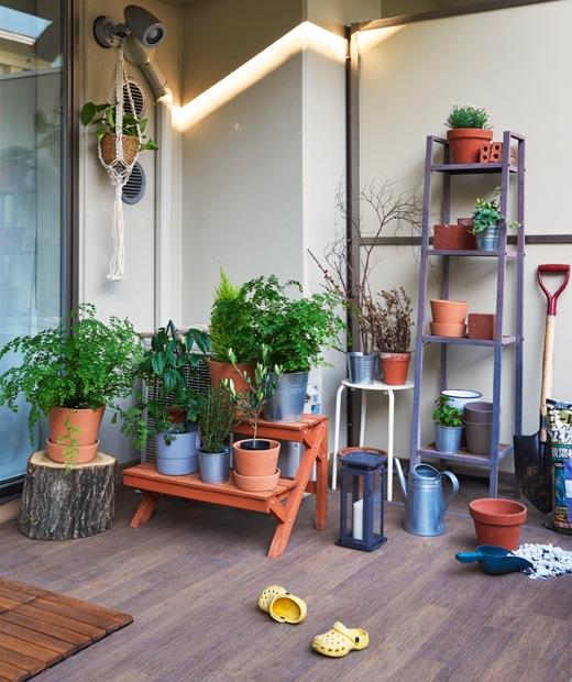 戶外空間舖上木地板,長凳和層架上放有盆栽植物。