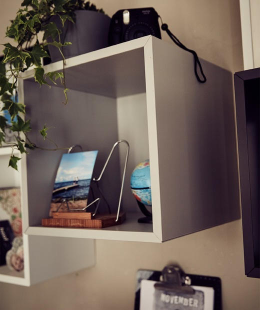 Pictures and plants displayed in a cubed open storage unit.