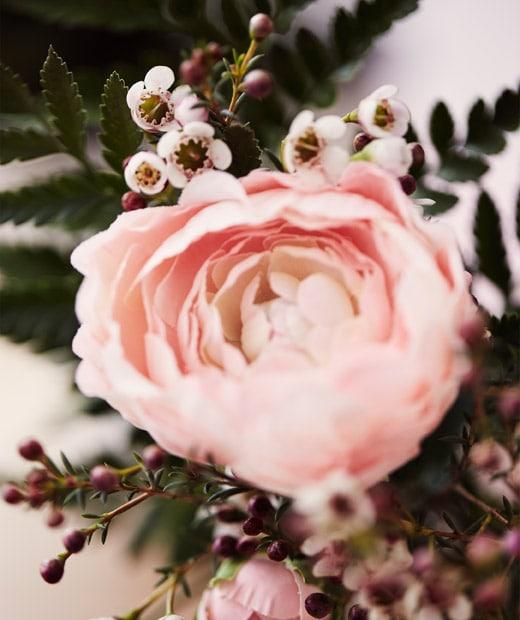 人造粉紅色毛茛和綠葉。