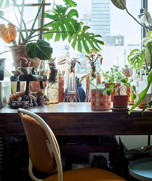 木檯上放有盆栽和花瓶,旁邊有一張橙色旋轉辦公椅。