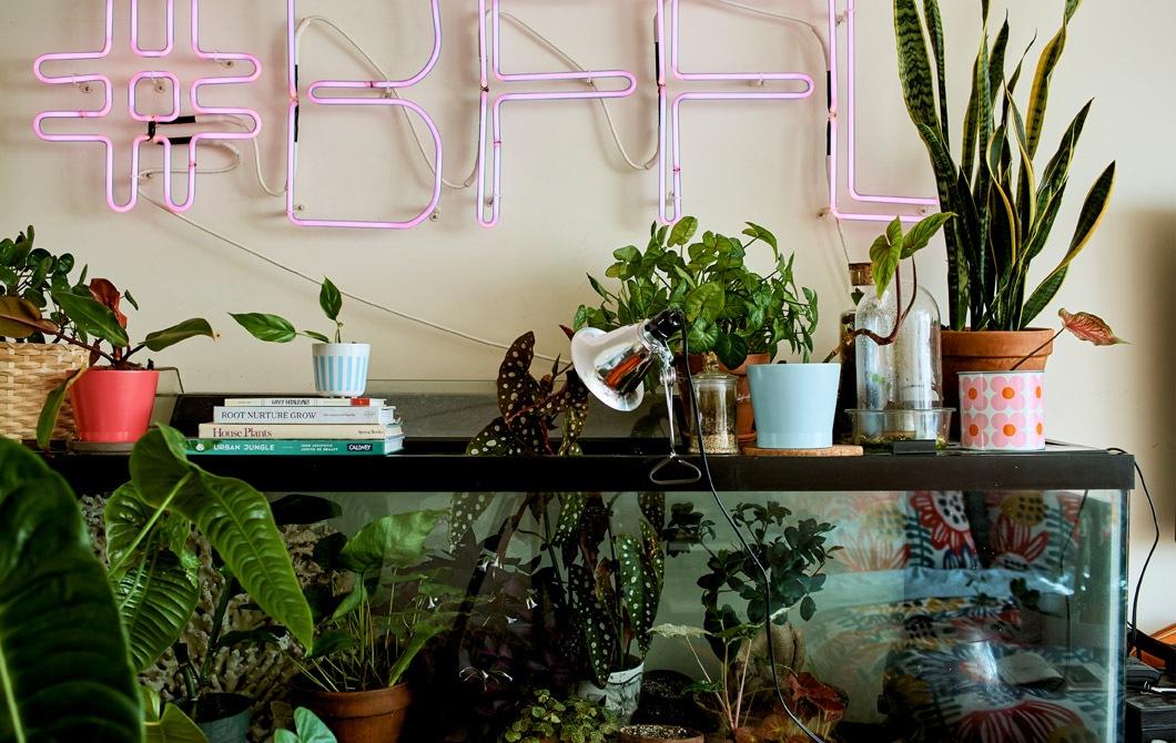 睡房的魚缸內有植物,牆上掛有粉紅色霓虹燈標誌。