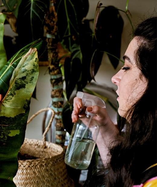 一位年輕女士在用噴水壺為植物澆水。