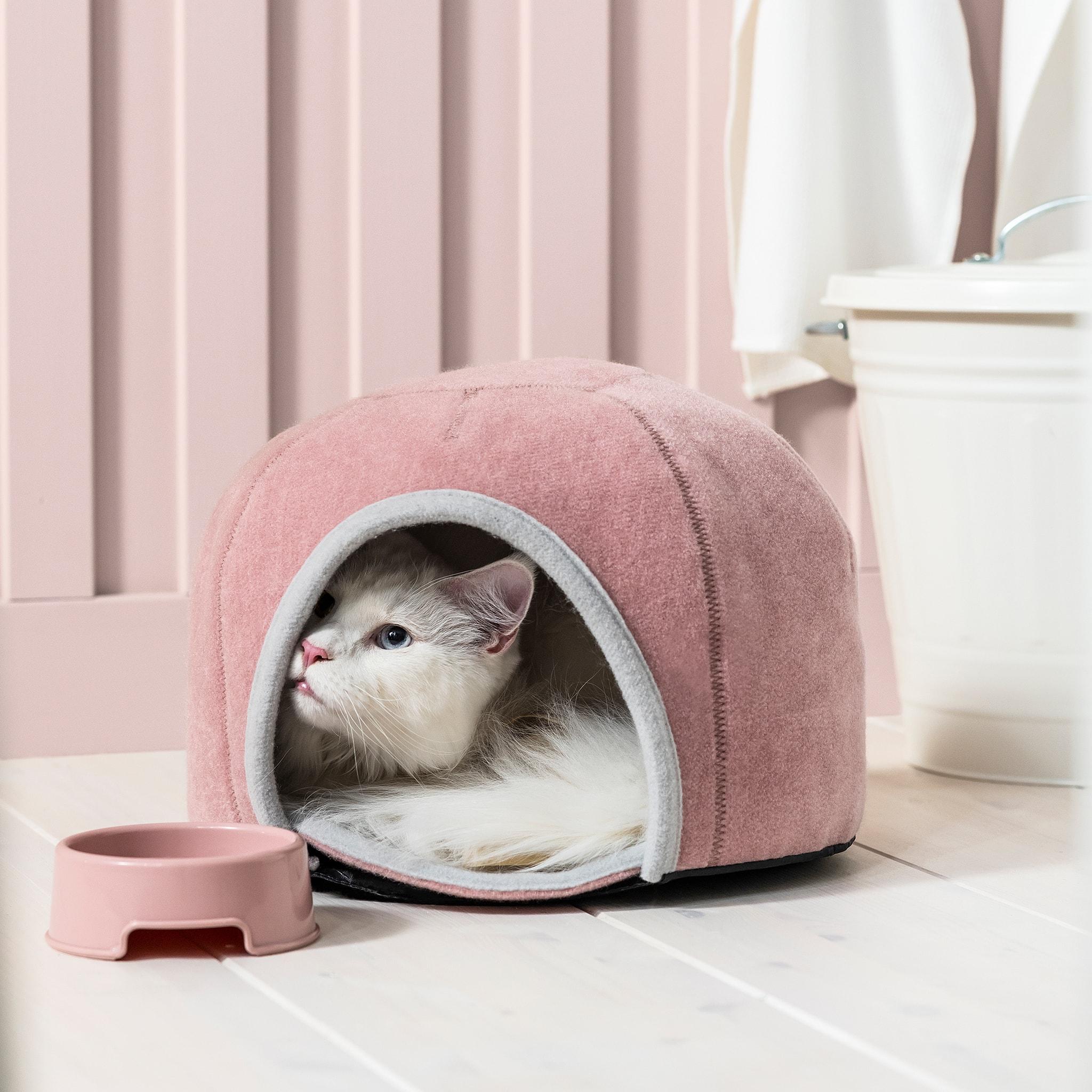一隻貓從坐墊般的軟布圓頂貓屋中探頭而出,入口旁有一個顏色相襯的寵物碗。