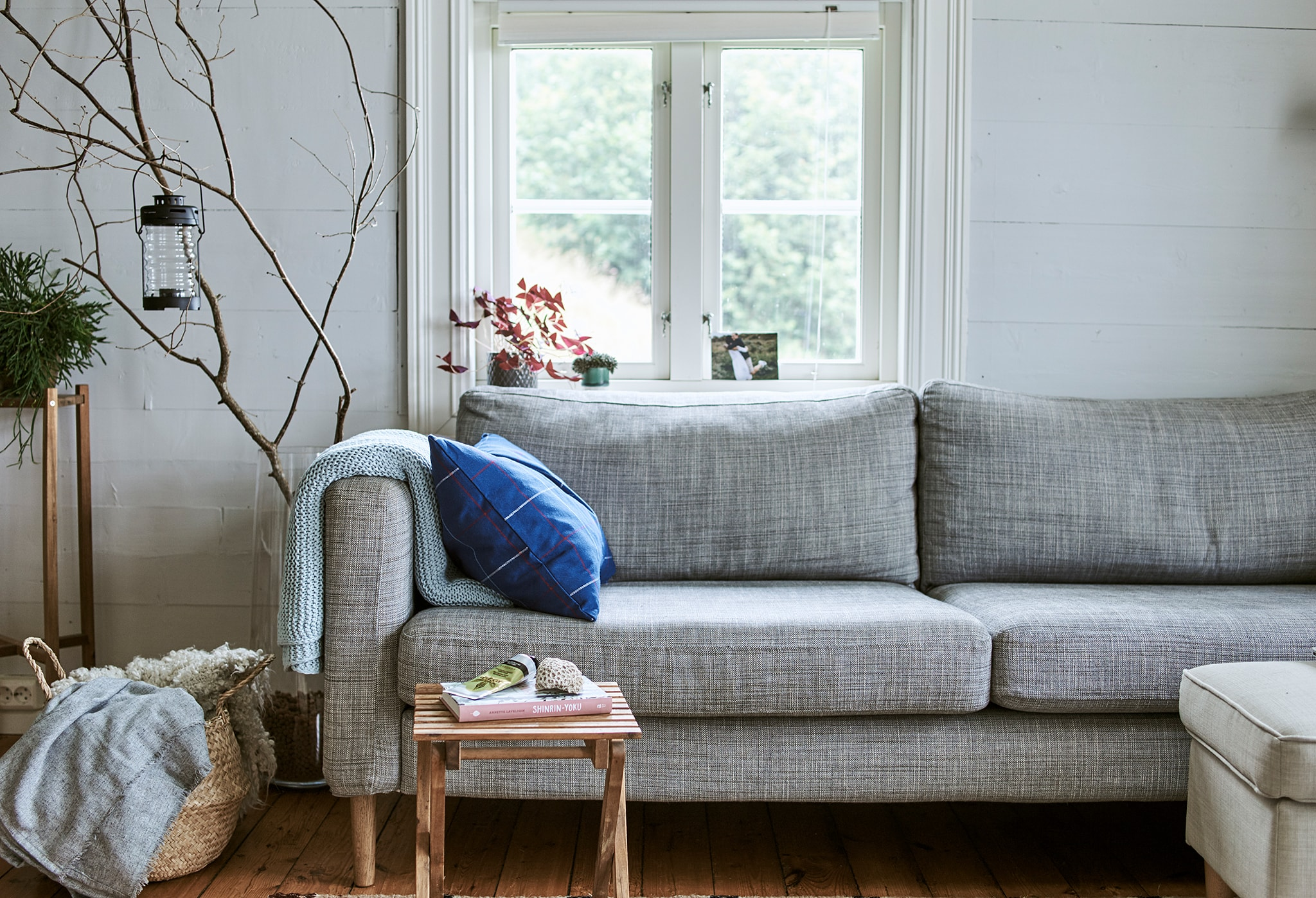 A grey sofa in front of a window, woolly throws stored in a basket beside it and tree branches displayed in a big glass vase.