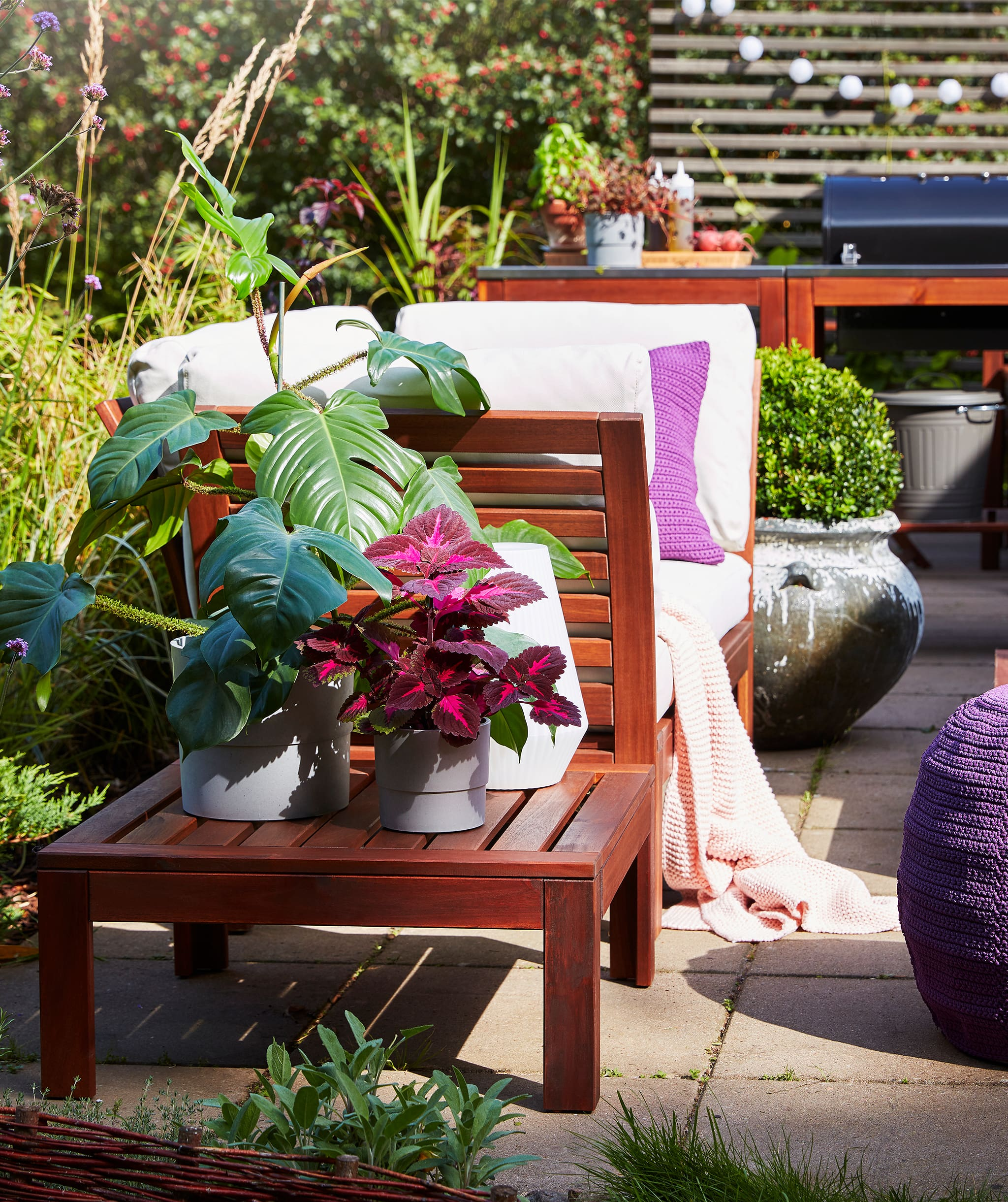 Plants in different sizes and colours placed on a terrace with outdoor furniture and a garden in the background.
