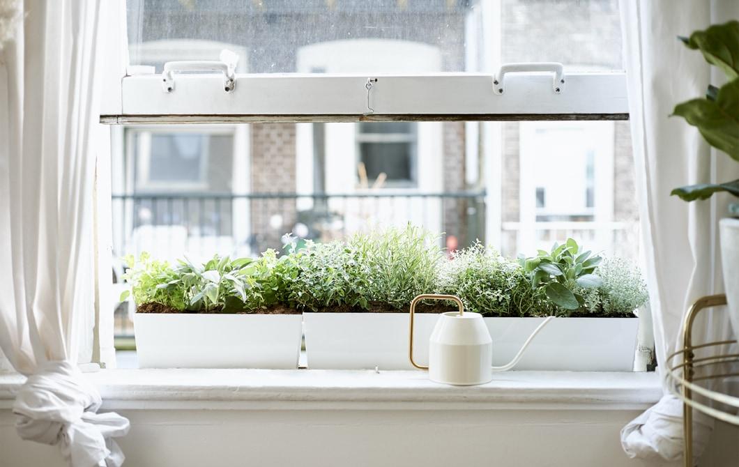 家居巡禮:讓城市公寓重投自然懷抱