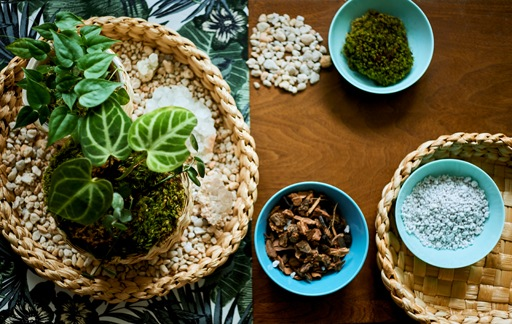 家居巡禮:獨特盆栽餐檯擺設